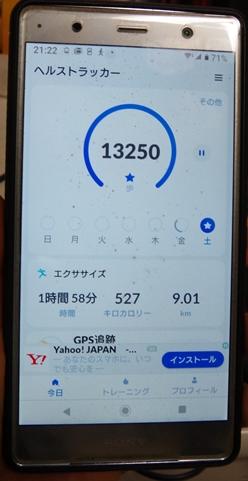 IMGP7099.JPG